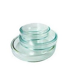 Boîte de Pétri 100 mm en verre borosilicaté