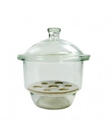 Dessiccateur verre à bouton et plaque de porcelaine 250mm ECO