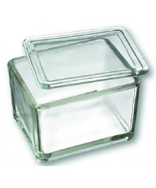 Cubeta per a tinció de vidre amb tapa