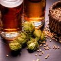 Productos e instrumental para elaborar cerveza artesana